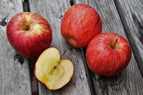 사과껍질-콜레스테롤