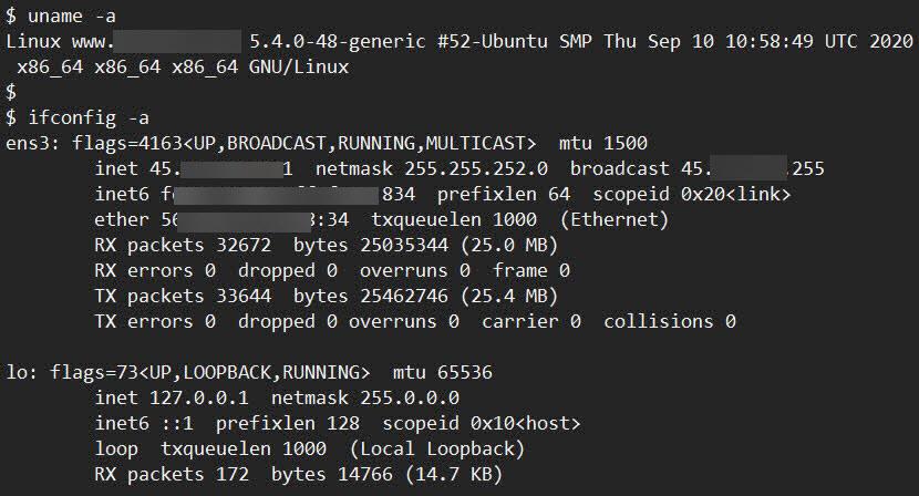 벌처 클라우드에 위치한 우분투리눅스 20.04 서버