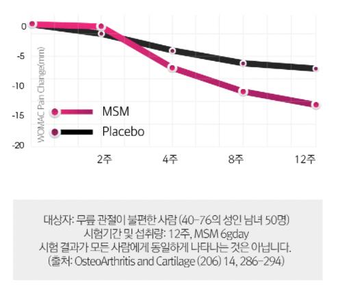 MSM 섭취시 통증 감소 그래프표