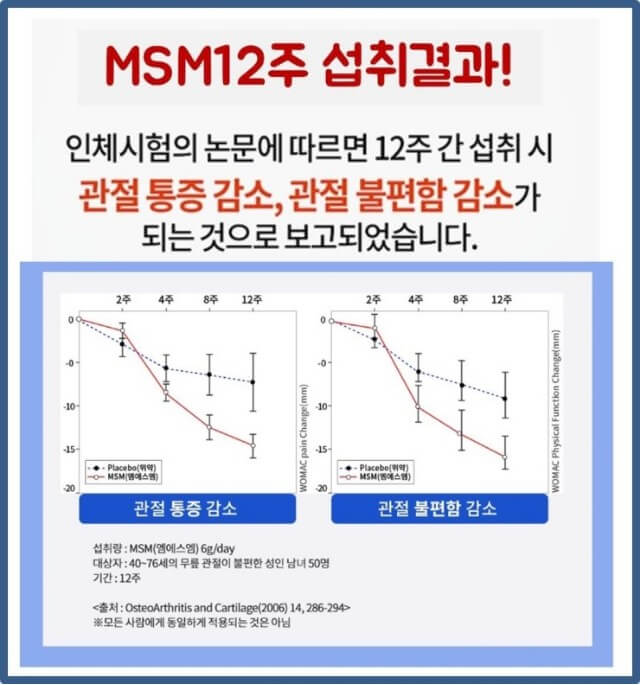 MSM 연구 결과
