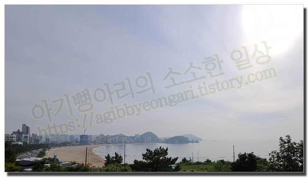 부산24시간카페