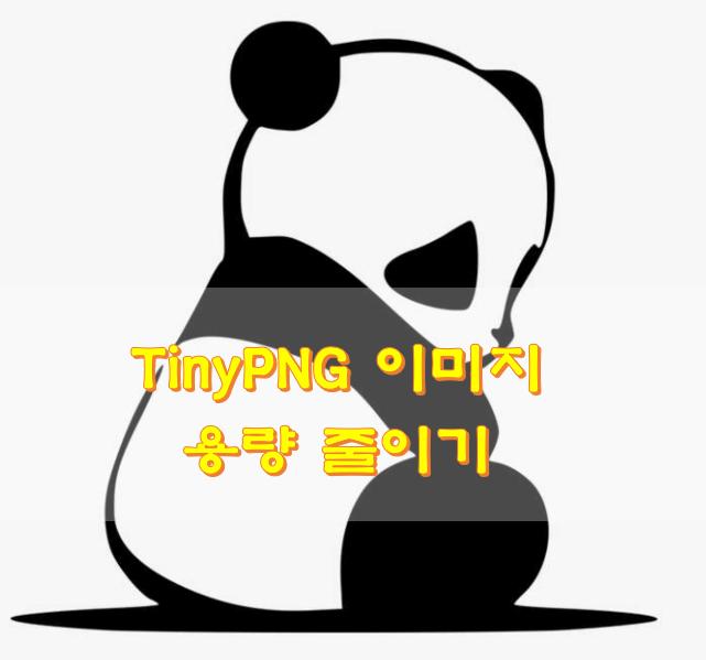팬더가-앉아있는-모습
