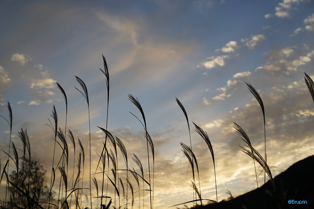 [BP/연천] 제주도 만큼 좋다 - 주상절리, 재인폭포 그리고 가을 하늘