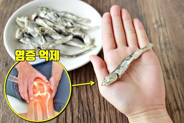 관절염에 좋은 음식 멸치 효능