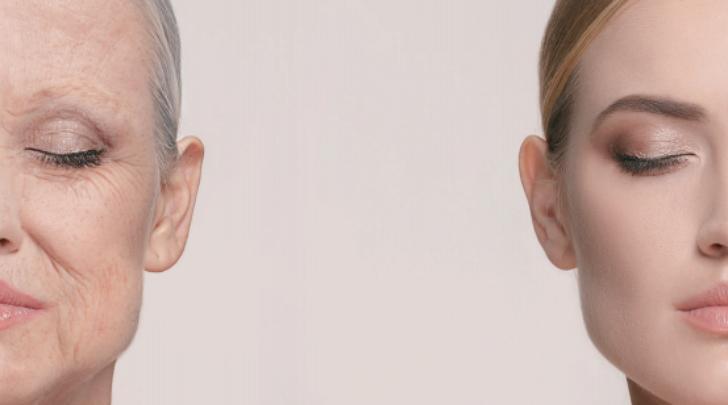 두 여성의 얼굴 비교