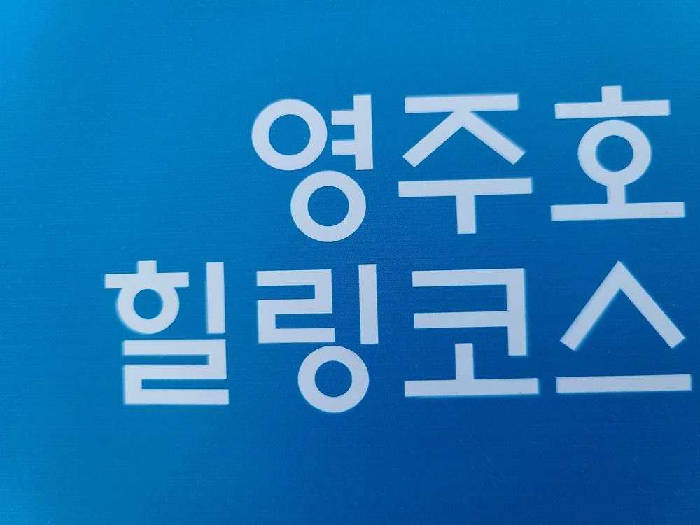 [ 영주 여행 ] 영주댐 영주호 힐링코스