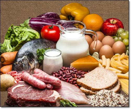 아연 식품
