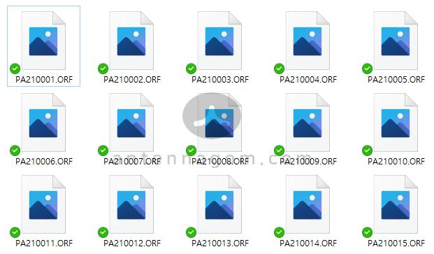 윈도우10 RAW 파일 미리보기 2