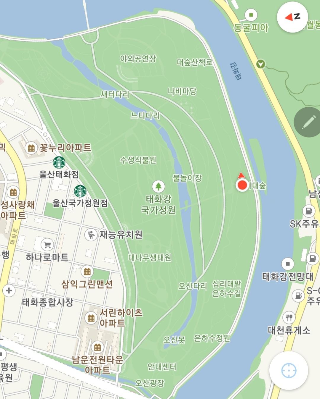 울산 태화강 국가정원 십리대나무숲길